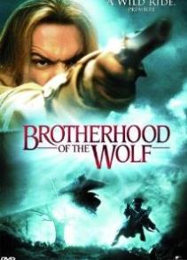 Чонын нөхөрлөл (2001)